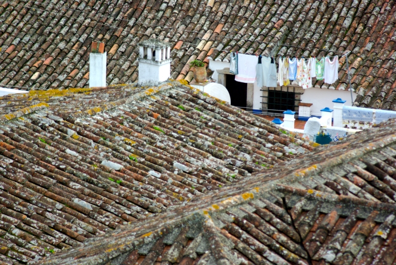 Obidos' Roofs