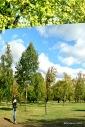 Anish Kapoor @ Kensington Gardens: C-Curve