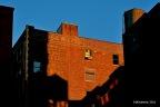 Conceptual New York