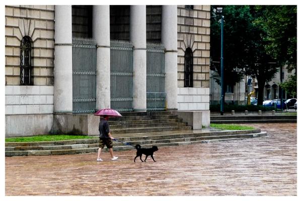 Milano: Walking the dog